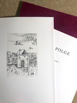 « Peintures » de Denis Polge – Tirage de tête Texte de Claro