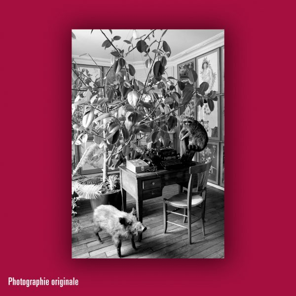 Jean Le Gac : photo-texte