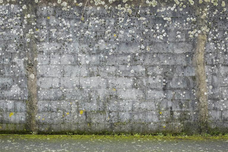 """""""Parois"""", photographie de Eric Pillot"""