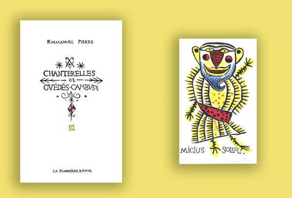 Chanterelles image 2