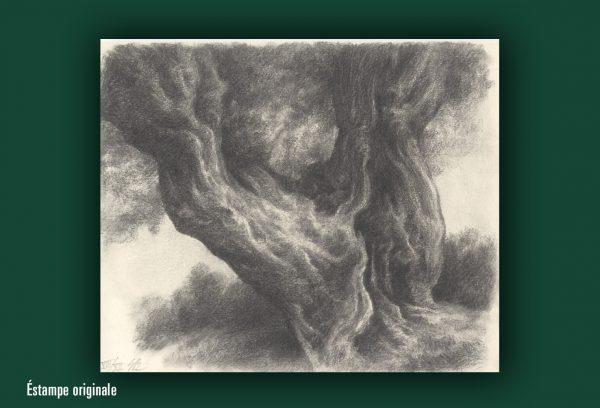 Stanislas Bouvier : Peintures et fusains.